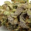 lemon-kush-strain-review-09