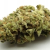 lemon-kush-strain-review-17