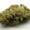 lemon-kush-strain-review-18