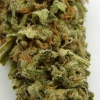 maui-wowie-strain-review-10