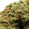 maui-wowie-strain-review-15
