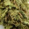 maui-wowie-strain-review-24
