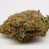 purple-kush-strain-review-22