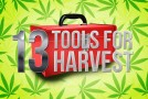 13 Harvest Tools Youll Feel Lucky to Have