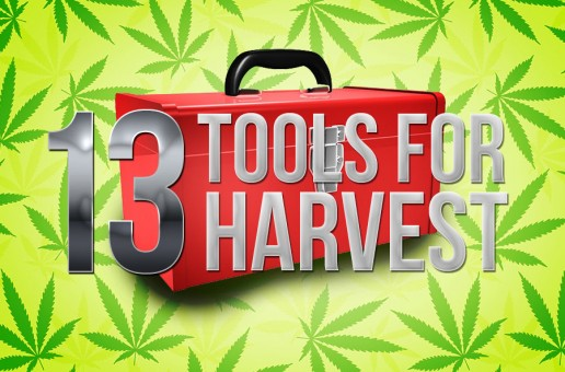13 Harvest Tools You'll Feel Lucky to Have