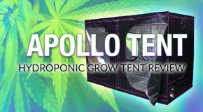 Apollo Horticulture's Mylar Hydroponic Grow Tent for Indoor Growing